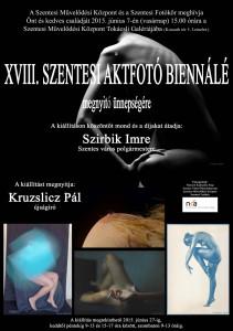 Aktfotó Biennálé plakát 2015