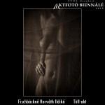 Fischbäckné Horváth Ildikó - Tüll-akt