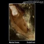 Marton Ferenc - Festett test