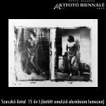 Szaszkó Antal - 15 év 1. (öntött emulzió alumínium lemezen)