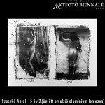 Szaszkó Antal - 15 év 2. (öntött emulzió alumínium lemezen)